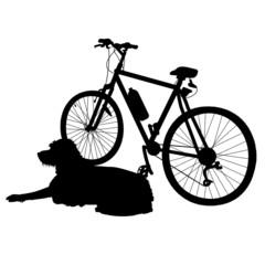 Dog and Bike Silhouette
