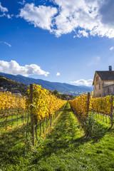 Paesaggio autunnale in Trentino Alto Adige