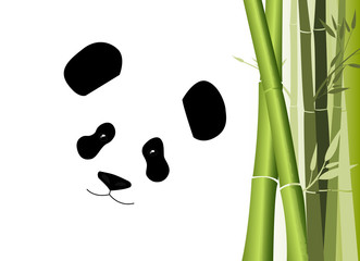 giant panda bear and bamboo