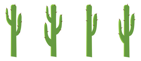 Four cactus different shape