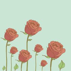 rosenwiese