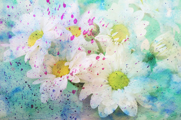 gentle chamomile's flowers and watercolor