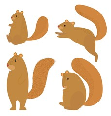 Hairy squirrel icon set on white background