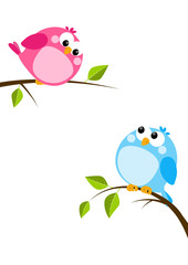 Cute birds on spring branches
