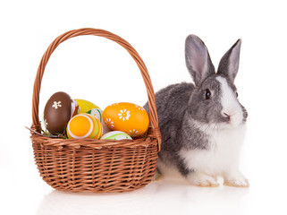Rabbit with basket on white background