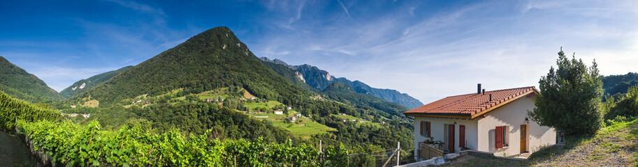Vineyards Villas and Vistas