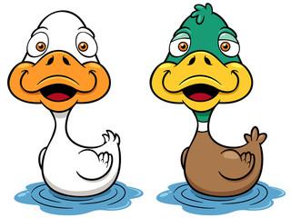 Vector illustration of Cartoon Duck