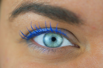 Close Up, Woman's Blue Eye
