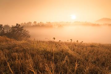 Landscape of mountain view at Phuthapboek Khoo kho , Phetchabun