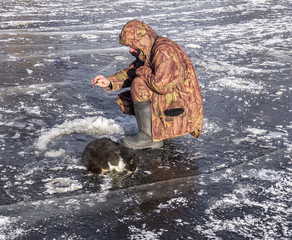 The fisherman with a cat on ice