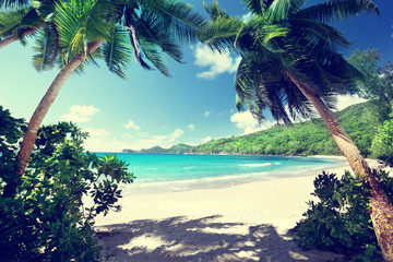 Fotomurales - beach, Mahe island, Seychelles