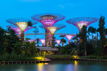 Foto op Plexiglas Singapore Gardens by the Bay - SuperTree Grove in Singapore