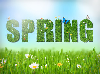 Spring word with grass and flowers