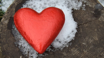Red Heart In Nature
