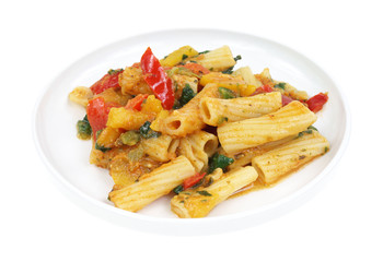 Small serving of rigatoni pasta with vegetables