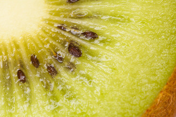 kiwi texture, green kiwi close up surface showing juicy texture