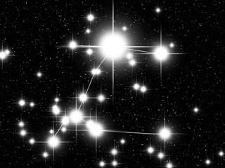 Canis Maior constellation with Sirius