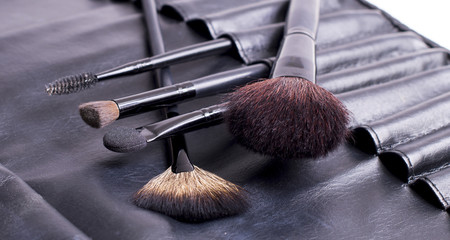 Make-up brushes black case