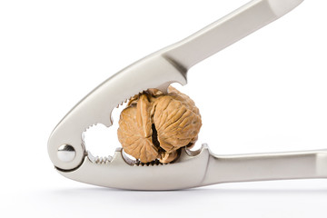 walnut and nutcracker on white background