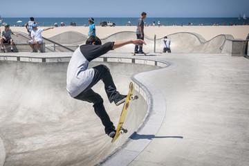 Venice beach skater
