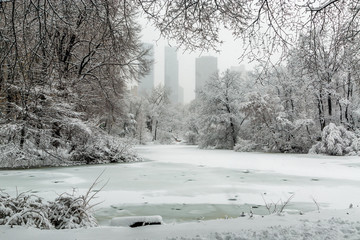 Fototapete - New York Central Park in snow the pond