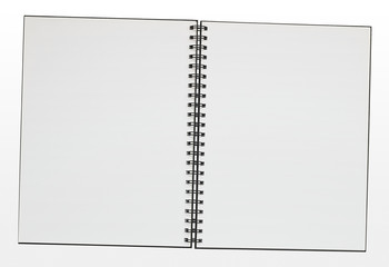 Blank ring binder pad border
