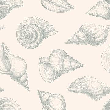pattern of seashells