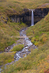 the waterfall svartifoss on iceland