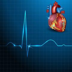 Human heart rhythm on a beautiful blue background with light sha