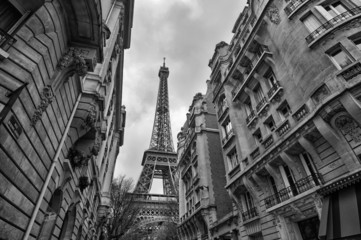 Fototapete - Paris Buildings with Eiffel Tower in the middle.