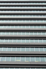 Windows on tall office building