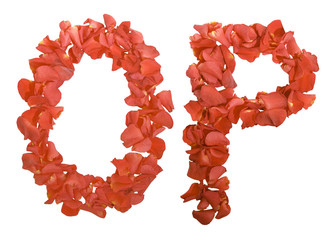 letters of rose petals