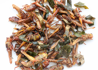 Fried grasshoppers.