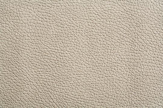 high rezolution texture of white leather