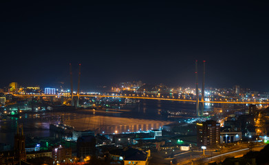 Vladivostok cityscape, winter. Night view.