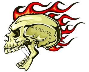 brown flaming skull