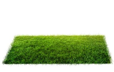 Wall Mural - grass in field