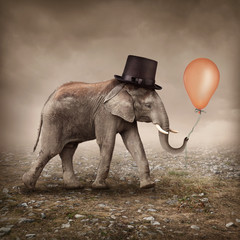 Fototapete - Elephant with a balloon