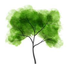 Watercolor tree. Vector illustration