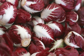 bio organic radicchio red salad on farmers market