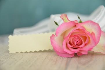 Rose mit Schild und Textfreiraum