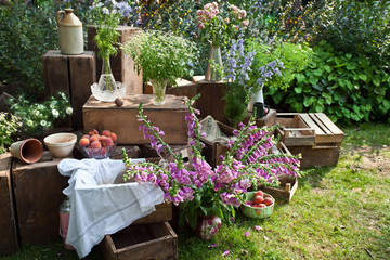Garden composition with flowers and fruits