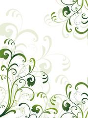 floral,grün,flora,blatt,blume,frühling,design,rahmen,vektor,oliv