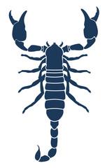 Scorpion tattoo. Vector illustration