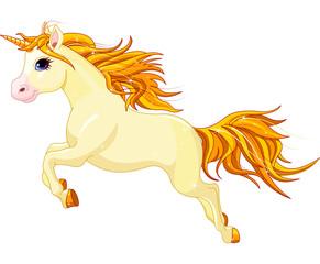 Running unicorn