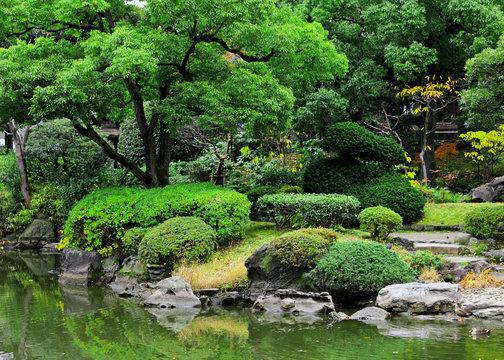 Beautiful garden in Japan