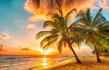 Foto op Canvas Zee zonsondergang Barbados