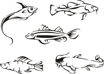 Set of black and white fish