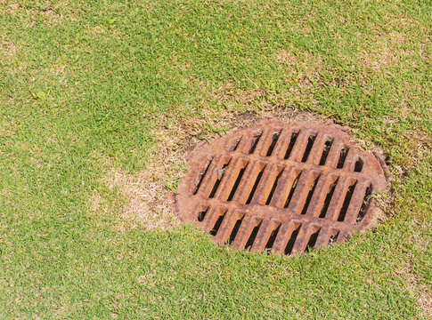 Dry metal storm drain grate on green grass.