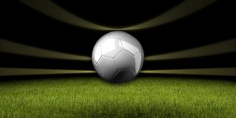 WM, Fussball, Brasilien, 2014